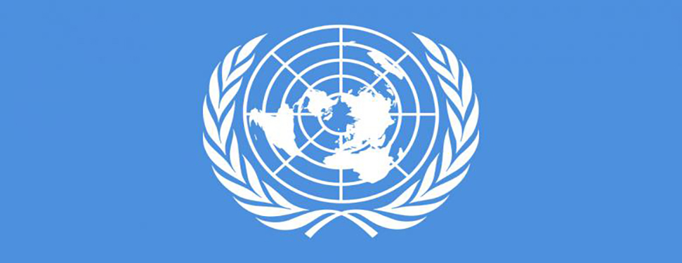 The UN General Assembly adopts Resolution on ODR
